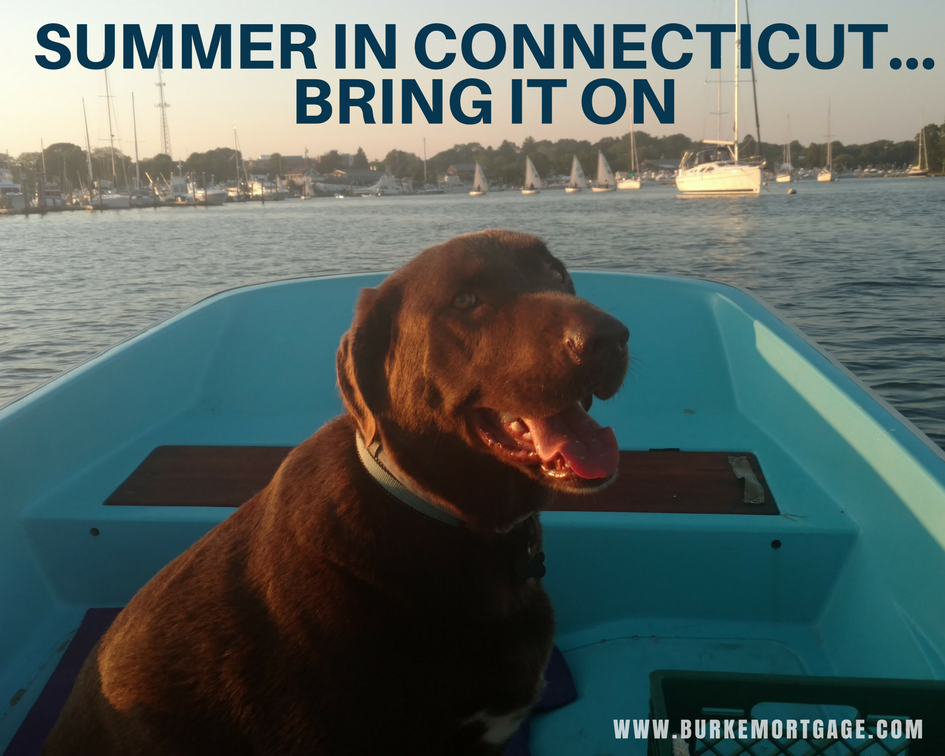 Summer in Connecticut