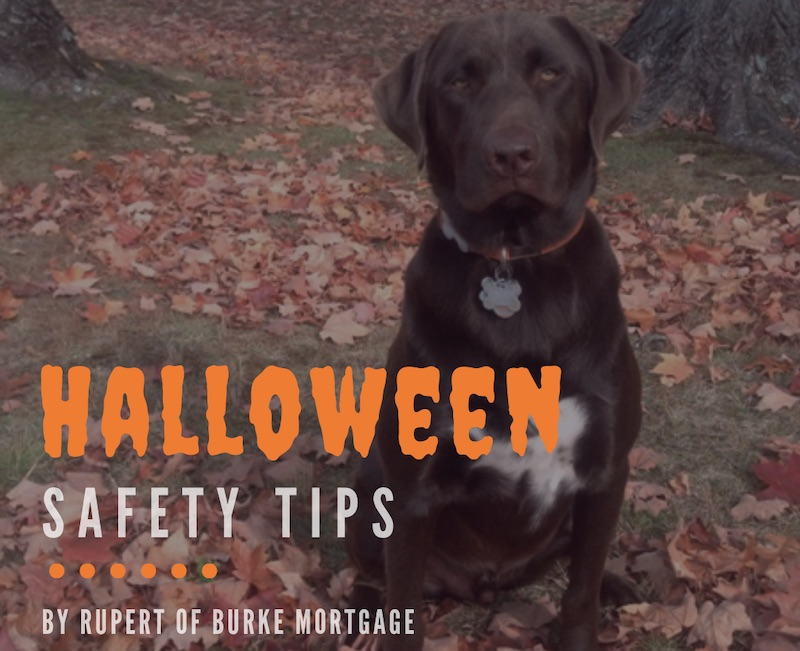 Community service Halloween Safety Tips